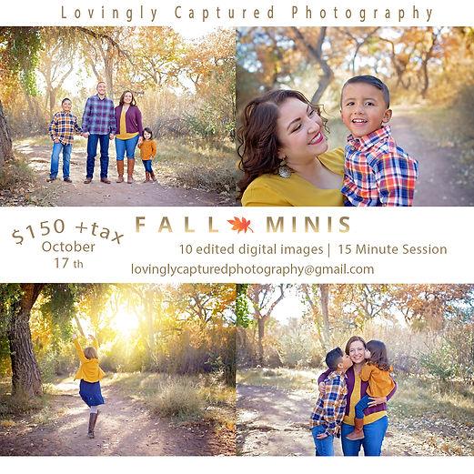 fall mini 2020.jpg