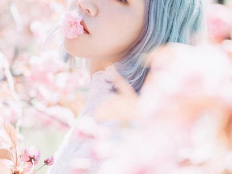 北海道-個人婚紗 (櫻花篇)