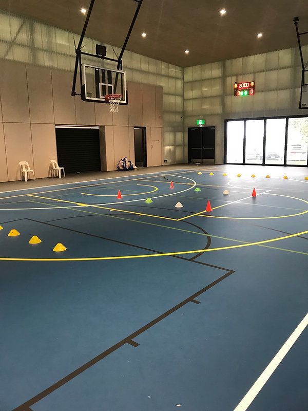 Basketball lessons skill training officer coaching trainer online zoom