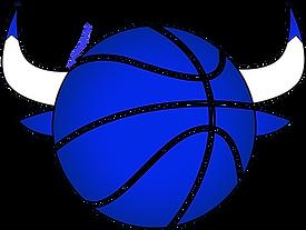 bmb bull logo new blue.png