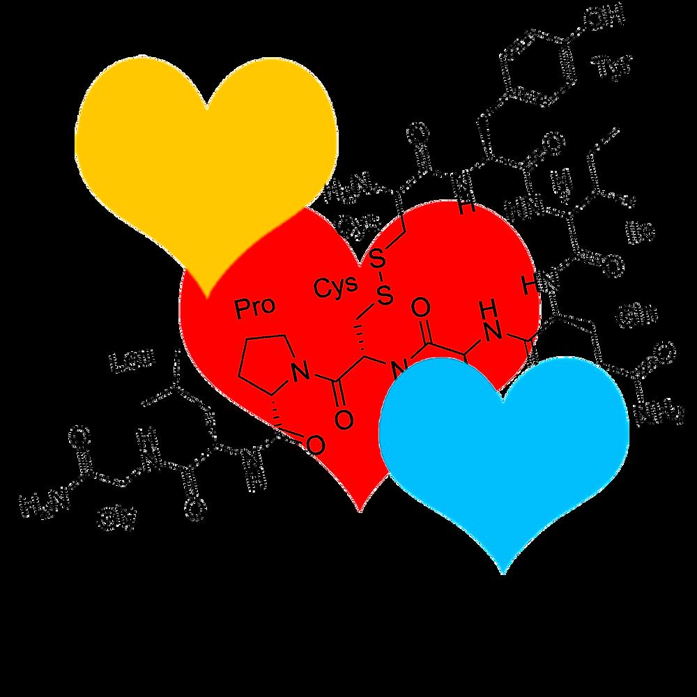 Oxitocina. Molécula del amor