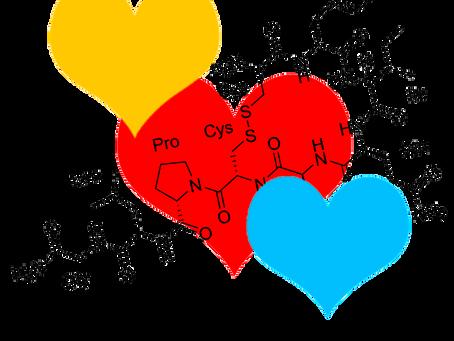 La oxitocina. La molécula del amor