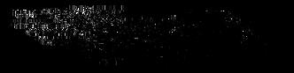 1B6FE205-48F5-4D5B-9B62-FCBA0242C902.png