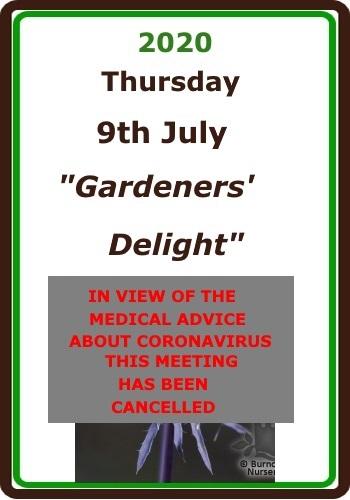 2020 07 July COVID