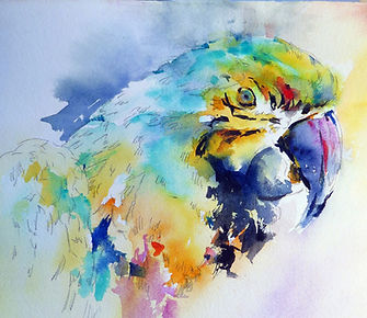 parrot for mini workshop copy.jpg
