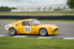 Goodwood - Gerry Hulford 2014.jpg