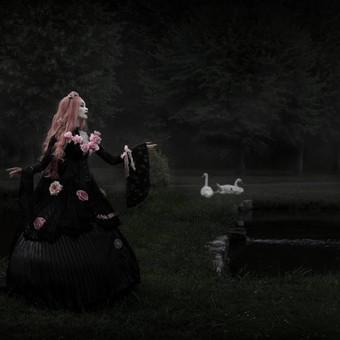 swans_of_despair___gothic_princess_by_ni