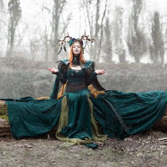queen_of_elves_on_a_dead_tree_in_the_sno