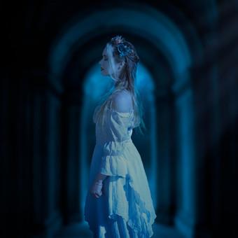 2__serie___the_bride_has_gone_by_emmaari