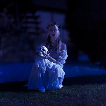 7__serie___the_bride_has_gone_by_emmaari
