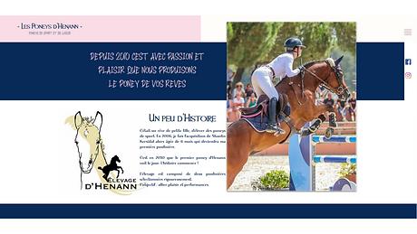www.poneys-henann.com.png