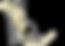 Poneys d'Henann, poneys Shetland, poneys de Sport et Loisir, pension pré, pension élevage 78660 Ablis