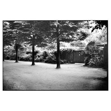 02-2014-43-21 D76 1+0 8'.jpg