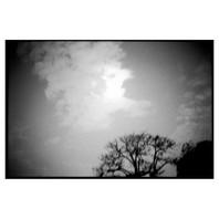 05-2014-46-03 HC110 16' 1600.jpg