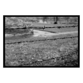 05-2020-09-05.jpg