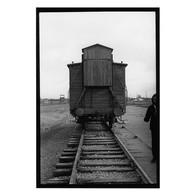 Auschwitz 2020