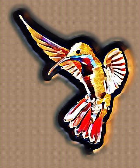 hummingbird 5.png