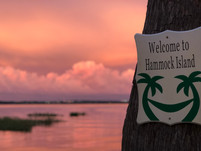 Welcome to Hammock Island.JPEG