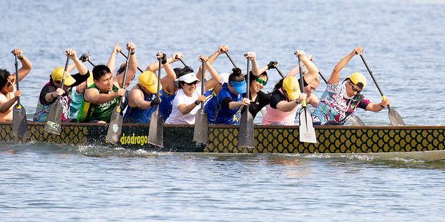 DSA dragon boat club training at homebush bay, Rhodes