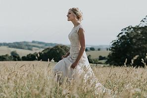 robertson wedding ,