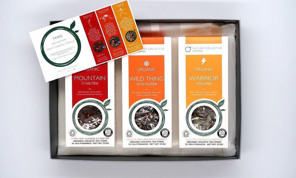 Yang Tea Tonic Collection