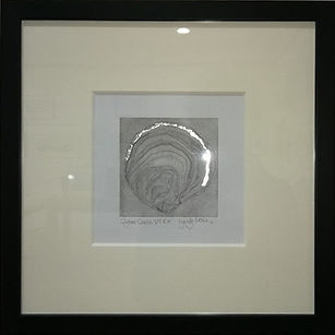 Oyset Shell.jpg