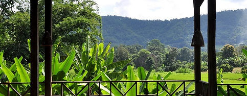 Lanjia Lodge_edited.jpg