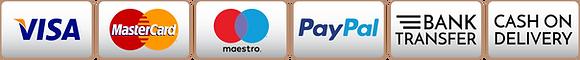 Payments-ICONS-crociereconero.png