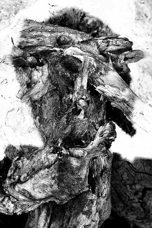 Les heures humains IV, Jerzy Piwowarczyk, 2014