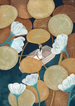 Among the Lilypads