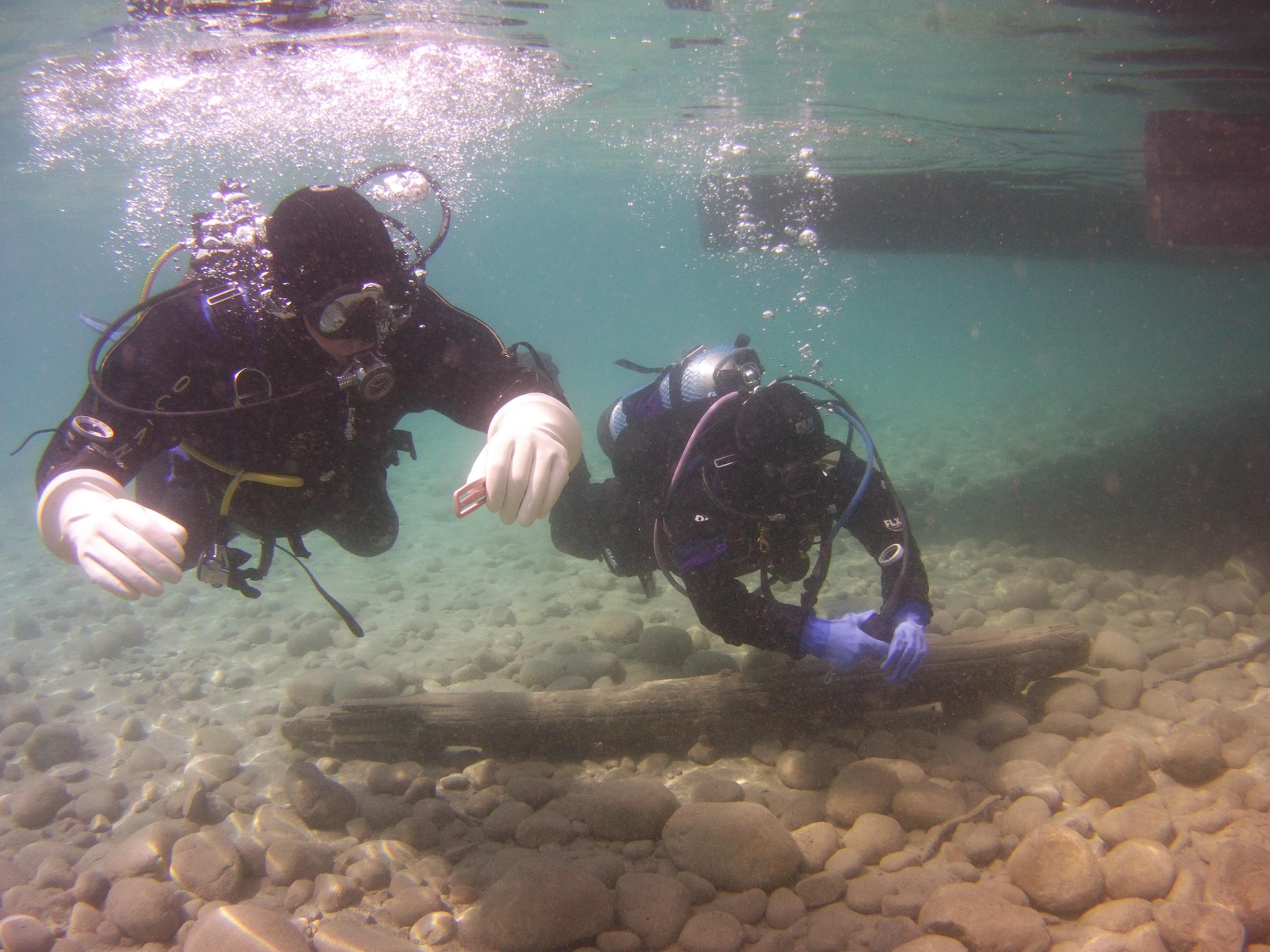 jasper underwater