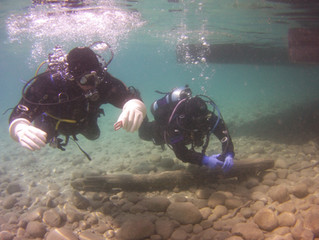 Itching to get wet? Dive in Alberta this Fall 2021!