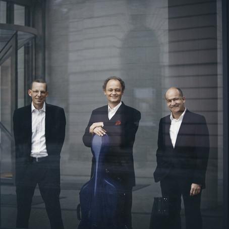 Fragen an das Feininger Trio