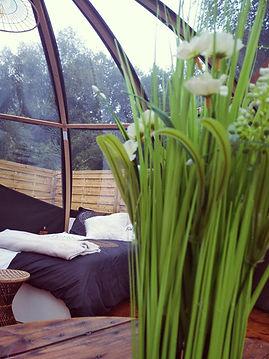 Séjour insolite en bulle bretagne finistere romantique calme étang spa cabane