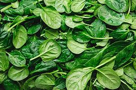 SpinachAdobeStock.jpeg