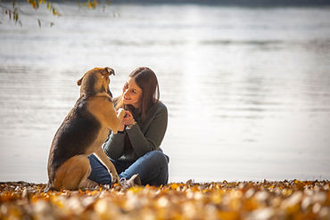 Outdoor, Tierfotografie, Foto mit Hund, Mannheim, Katze, Hundefotografie