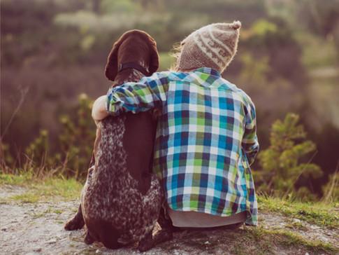 如何緩解寵物的分離焦慮症