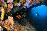Cave colorée