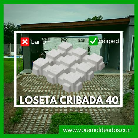 LOSETA CRIBADA 40.png