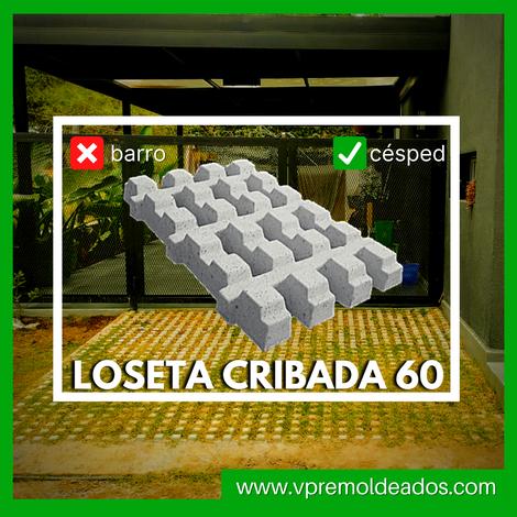 LOSETA CRIBADA 60.png