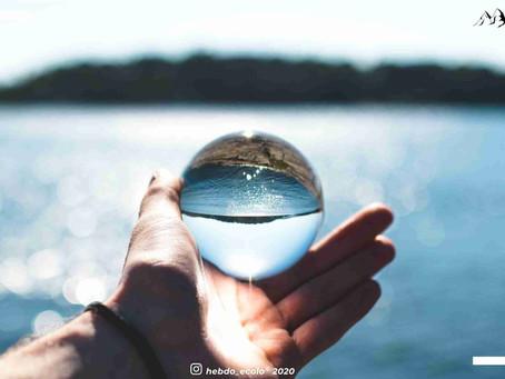 Synthèse du mois de juin : Save Water