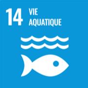 14.vie aquatique.png
