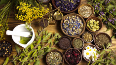 10 Natural Herbs That Will Heal And Prevent Lowering Of The Immune System.