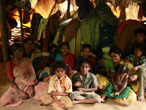 The Plight Of Adivasis In Tamil Nadu Has Worsened During The Covid-19 Pandemic