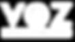 voz para conmutador blanco 2.png