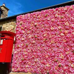 pink-wall.jpg