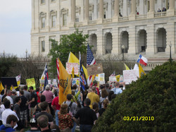 Ch 15 - Healthcare Reform Protesters