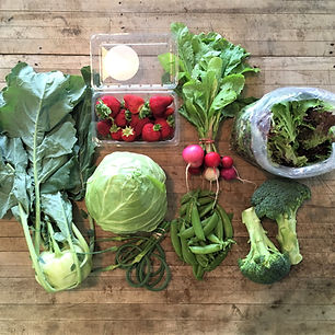 Summer Farm Share Produce