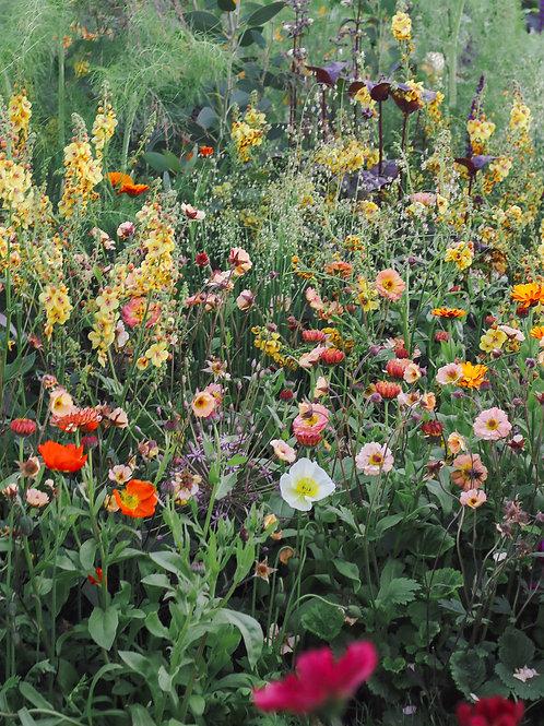 Flower Medow Wall Decor