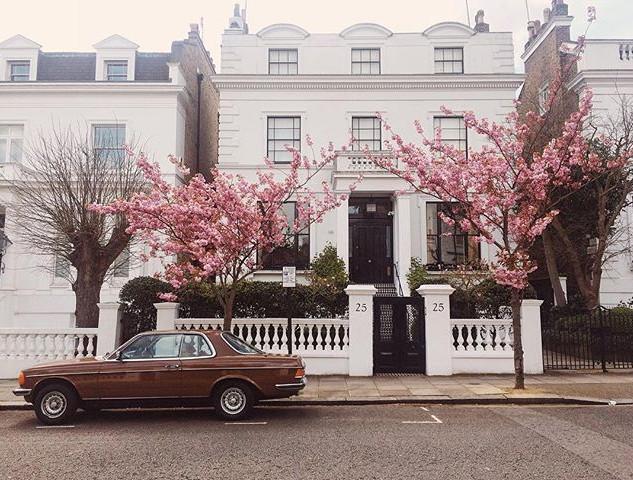 Cherryblossom  trees + vintage car + lovely old white house = 👌#london #nottinghill #portobello #london #city #citylife #travel #travelgram_